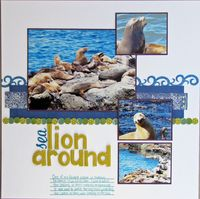 Analogous layout - sealion around