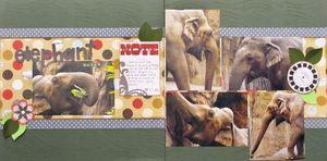 Elephant_salad_1683_lm